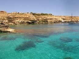 hotel mediterraneo park rose: