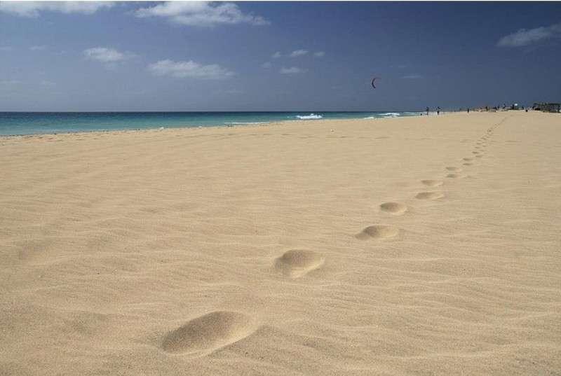FORMULA ROULETTE | Isola di Sal